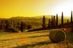 paesage toscane
