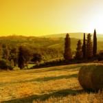 vacanze_toscana