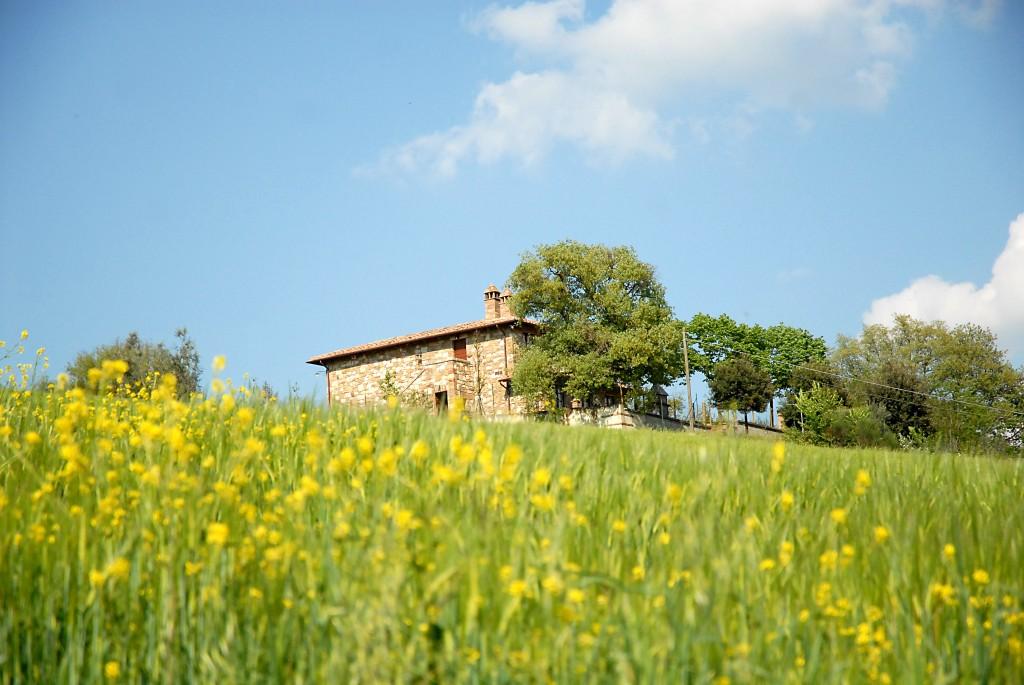villa_tuscany_rent